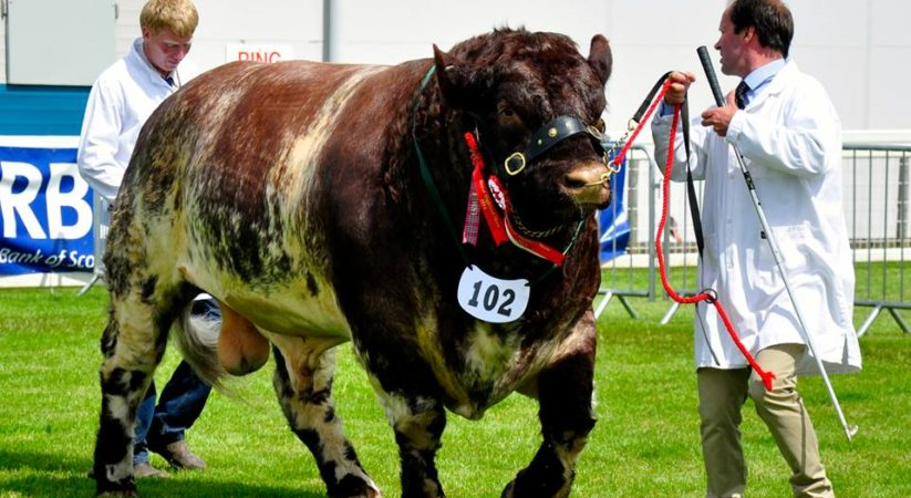 The 176th Royal Highland Show starts today